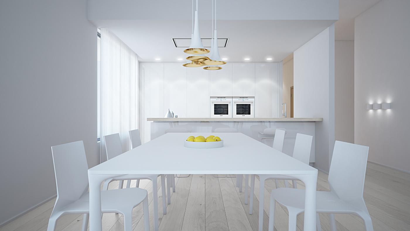 white apartment kitchen_aet piel design